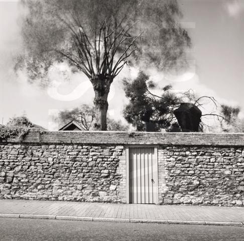 I love the idea of a secret garden.   Walled Garden; Winchelsea 1979. Fay Godwin. (c)The British Library Board
