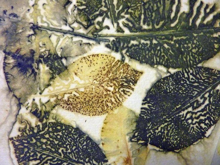 Great list of dye plants for eco dyeing and printing