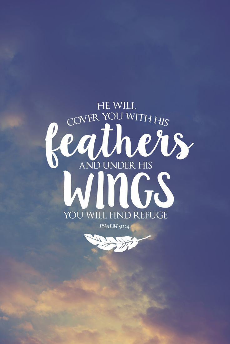 «He will cover you with his feathers and under his wings you will find refuge.» ‭‭Psalms‬ ‭91:4‬ ‭