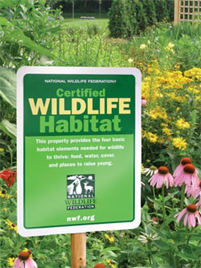 Cool idea for a take action project or service work - Find out how to get your backyard certified as a wildlife habitat and then...make flyers to let your neighbors know? get your school grounds or a play area certified? add what's needed (a bird feeder or nesting area) to a garden at a children's hospital or Habitat for Humanity house?