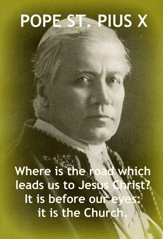 """""""Where is the road that leads us to Jesus Christ? It is before our eyes: it is the Church.""""  - Pope St. Pius X"""