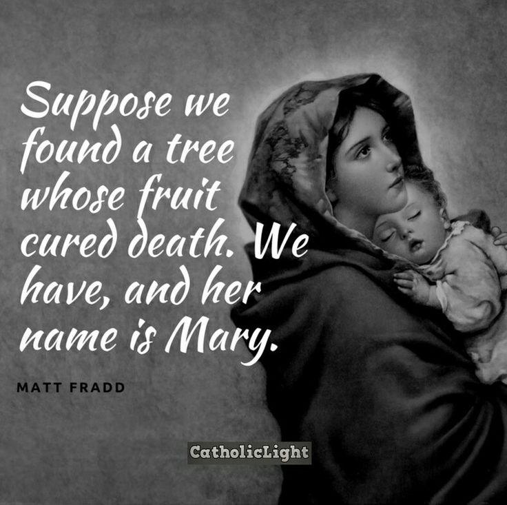 Mary                                                                                                                                                                                 More