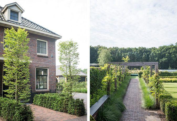 Tuinarchitect bart bolier ontwerp tuinontwerp - Tuin grind decoratief ...