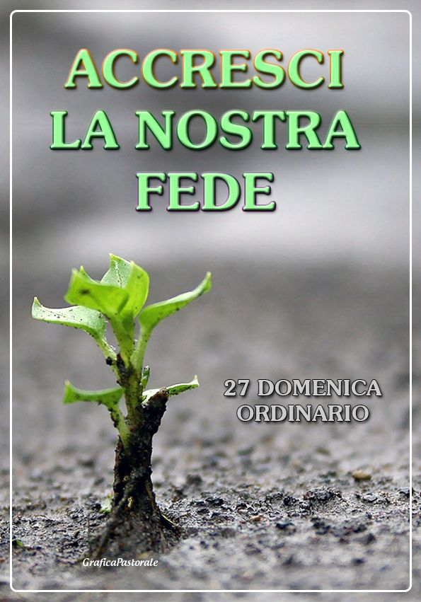 Manifesto 27 domenica ordinario (2 ottobre 2016)
