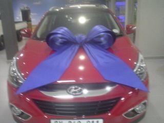 Car Bow