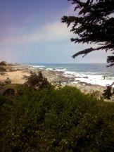 Isla Negra en Chile increible la vista hacia el mar, con las rocas, las olas y lo mejor, que el bosque tambien esta al lado! El Pablo Neruda que tenia esa vista desde su casa tenia mucha suerte....