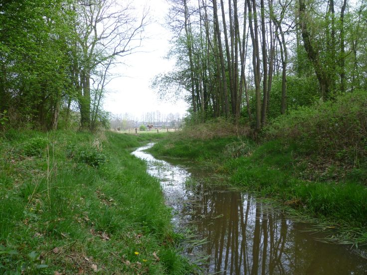 2014-04-06 Mooi stukje natuur richting Huis Diepenheim