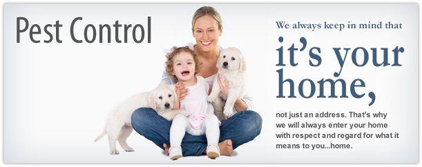 Don't select pest control association supplier who make utilization of harming chemicals, rather enlist Sydney Pest Services for more info visit www.sydneypestservices.com.au