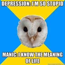bipolar owl meme - Google Search                                                                                                                                                                                 More