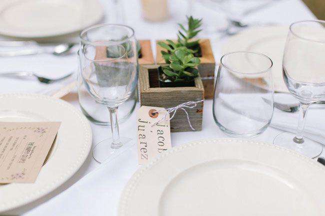 succulent favors for guests