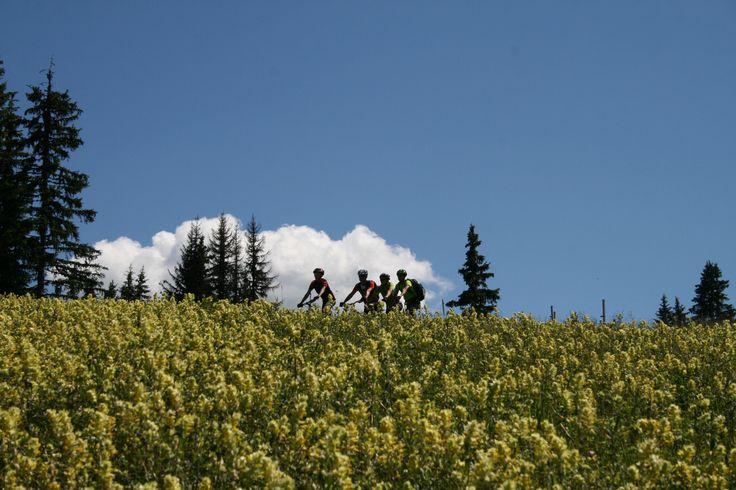 Domaine VTT Les Portes du Mont-Blanc 100 km d'itinéraires descendants 6 remontées mécaniques ouvertes un domaine à cheval entre Savoie et Haute-Savoie.