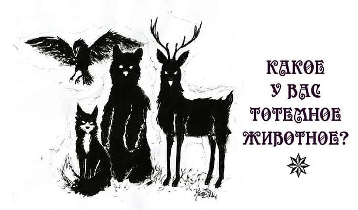 Представьте, что вы колдун. Согласно народным поверьям, у всех чародеев и ведьм имеются свои «фамильяры» — тотемные животные, оберегающие их от злых духов.Каждое животное воплощает в себе конкретные черты, присущие хозяину.. А какое тотемное животное было бы у вас, если бы вы решили заняться колдовством?Давайте узнаем!