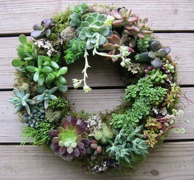 I must create one of these this fall!Succulents Wreaths, Christmas Perhaps, Succulent Wreath, Ideas Mak, You, Gardens Zen, Gardens Landscapes, Depression,  Flowerpot
