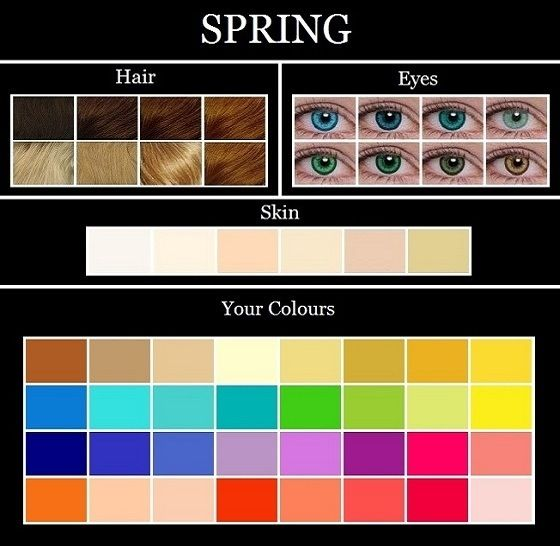 20120831-125410.jpg .spring colors for hair/eyes/skin