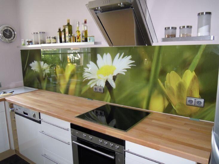 Moderne Küche Bilder Küchenrückwand mit Goldfisch-Motiv - glasbilder k che spritzschutz