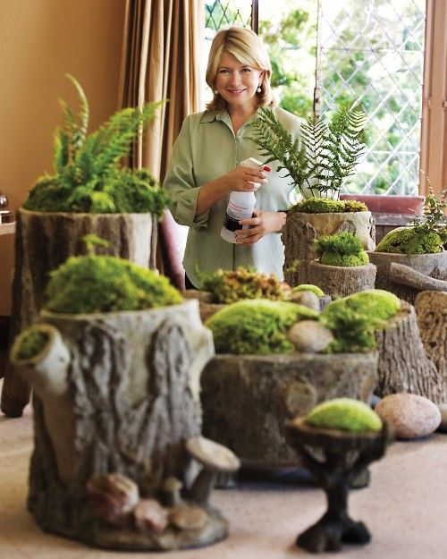 Idea for cut logs...drill out with hole saw, plant moss, ferns... And