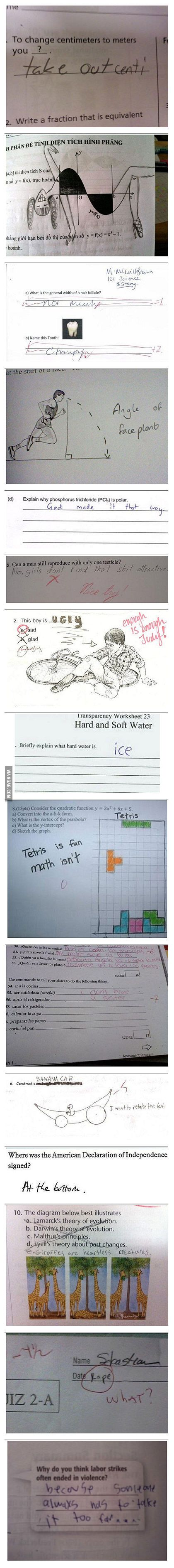 Some funny exam answers! {Tetris & the giraffes! Lol}