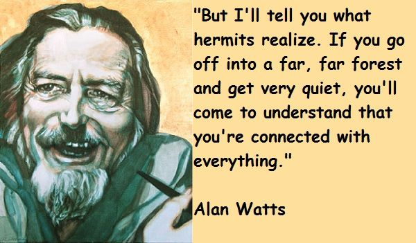 enjoy the silence...: Life Quotes, Hermit Life, Hermit Realization, Inspiration Ideas, Alan Watts, Watts Quotes, Photo, Hermit Quotes, The Roller Coasters