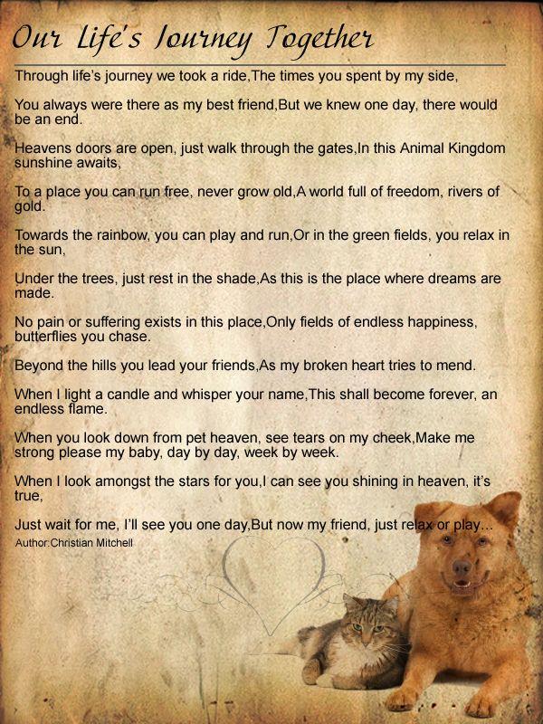a dogs prayer Pet Prayers Dog poems, Pet remembrance