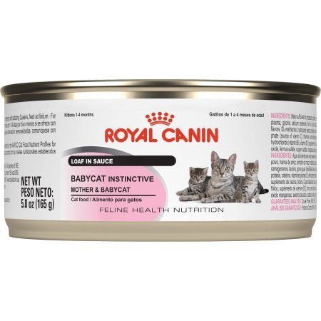 Pets Canned Cat Food Cat Food Cats