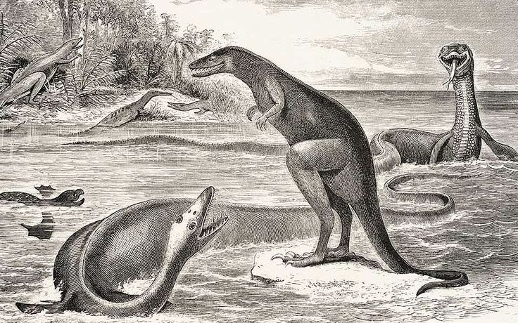 An outdated historical depiction of Dryptosaurus confronting Elasmosaurus, with two Hadrosaurus in the background. By Edward Drinker Cope, 1869