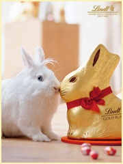 Create an 'Easter Traditions' Pinterest board & share it with Lindt Chocolate for a chance to win an Easter gift basket & $25 gift card to Michaels! If the contest receives over 1,000 entries, Lindt will donate $10,000 to Autism speaks. Help us give the gift of hope! http://on.fb.me/XufIWr *Required pin*