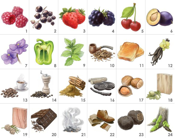 Rotwein-Aroma-Set (24 Weinaromen): 1.Himbeere, 2.schwarze Johannisbeere, 3.Erdbeere, 4.Brombeere, 5.Kirsche, 6.Pflaume, 7.Veilchen, 8.Paprika, 9.Minze, 10.Tabak, 11.Toast, 12.Vanille, 13.Kaffee, 14.Pfeffer, 15.Zimt, 16.Lakritz, 17.Haselnuss, 18.Eiche, 19.Zeder, 20.Schokolade, 21.Rauch, 22.Leder, 23.Trüffel, 24.Moos