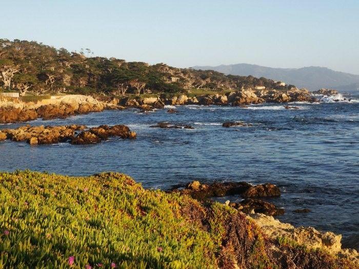 Taking 17-mile drive through Pebble Beach while driving through Coastal California