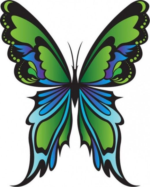 Artistic Green Butterfly