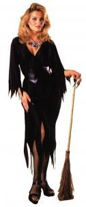 Bewitching Witch Costume - Adult Costumes