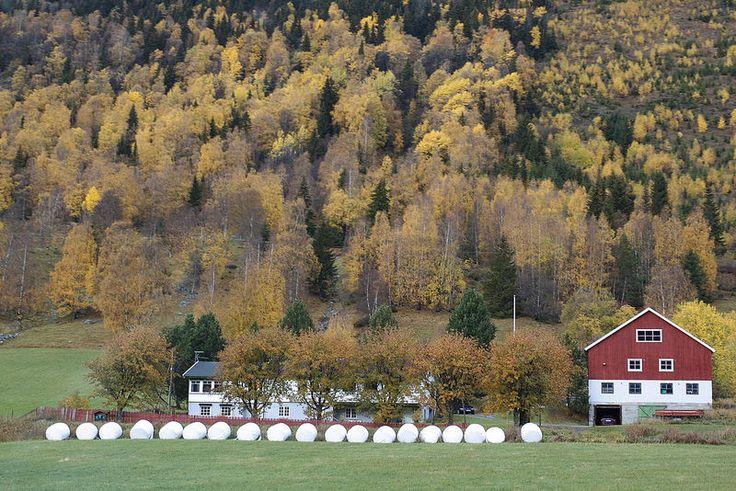 Los campos en Noruega