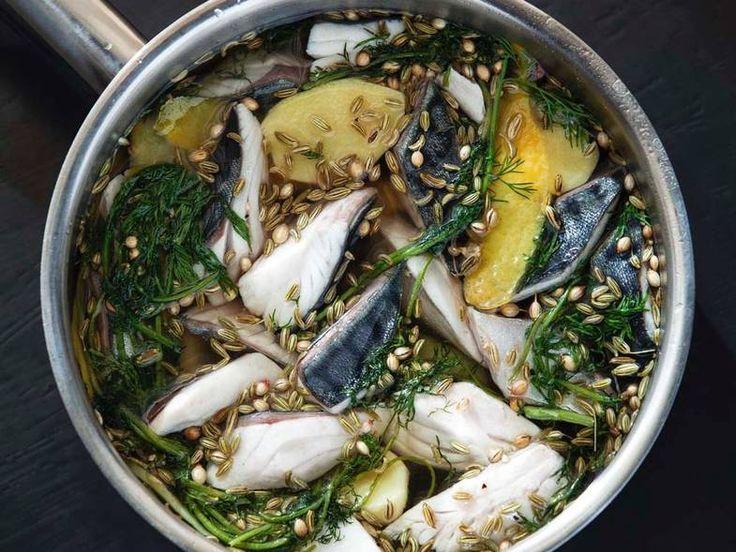 http://www.dn.no/smak/oppskrifter/2015/06/10/1344/Kokken-havet/syltet-makrell-med-sitrongress-og-ingefr #makrell #syltet #pickled #fish #fisk