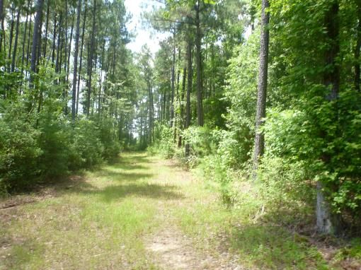 East Texas Recreational, Timberland For Sale