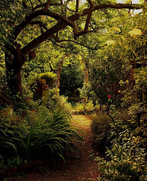 Enchanted Garden / Flickr - Photo Sharing! on we heart it / visual bookmark #11518420
