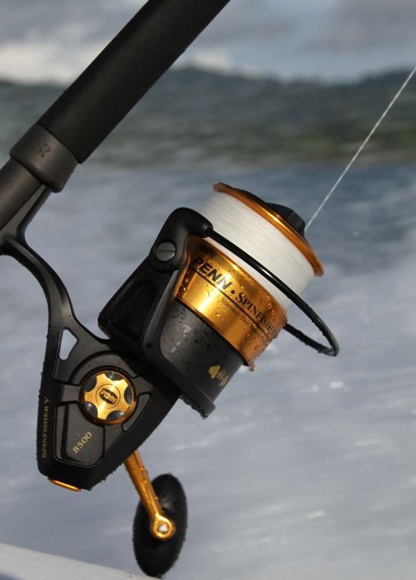 17 Tips to Choose the Best Spinning Reel | Sport Fishing