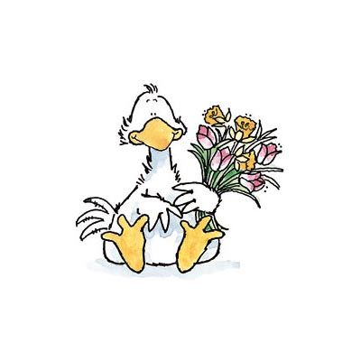 Cute illustrations - Cute duck