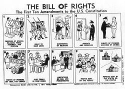 Constitution Lesson Plans for 8th Grade American History
