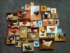 chicken paintings