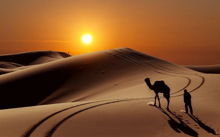 Pôr do sol no deserto do Saara Tramonto nel deserto del Sahara Sunset in the Sahara Desert