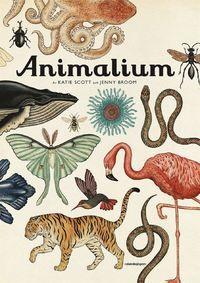 Animalium - Jenny Broom - Bok (9789129697148) | Bokus bokhandel