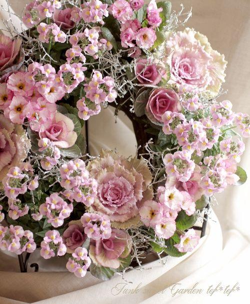 <i>Leucophyta browni</i><BR><BR>カロケファルス『プラチーナ』<BR>『クッションブッシュ』<BR>『シルバーブッシュ』 | すべての商品 | | Junk sweet Garden tef*tef* ガーデニング雑貨・花苗