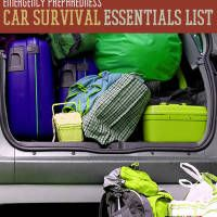 Emergency preparedness should be a top priority no matter where you go.  We spend a lot of time in our cars, so it only makes sense to have a car emergency preparedness kit at all times.  Use this list and make sure you have everything in your vehicle that you could need for