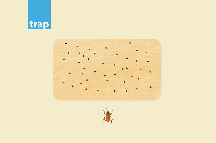 xylofaga-entoma-trap.png (1080×720)