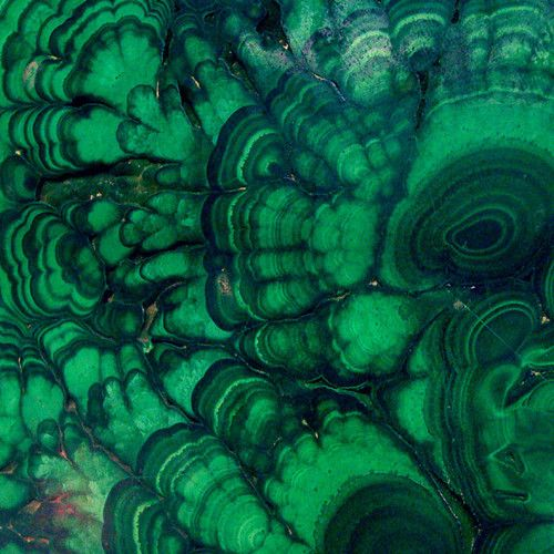 Emerald. Check out the Malachite Fabric for the V & M Designers Showcase at the West Palm Beach Antiques Show