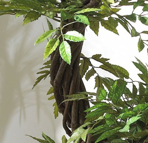 """Japanese Artificial Plants and Trees, Large Luxury Japanese Fruticosa Tree, Handmade Using Real Bark & Synthetic Leaves, Indoor Plant – 165cm Tall. #handmade **Sales Tax Free. Any orders from any state within USA are sales tax free.**The price you see is the price you pay** View the manufacturers promotional video on YouTube for this beautiful tree by searching: Japanese Fruticosa Tree """"Can You Believe It's Artificial"""". An artificial tree of stunning proportions standing at 165cm. Vi.."""