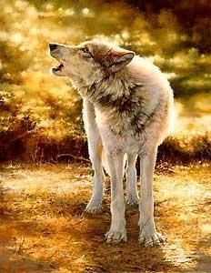 Wolfsong - Bonnie Marris - World-Wide-Art.com - $165.00
