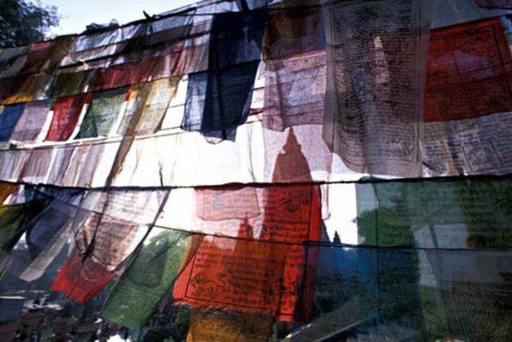 Photographies - Inde - Matthieu Ricard - Mahabodhi Stoupa - Drapeaux à prières - Mahabodhi Stupa - Prayer flags