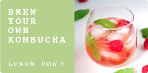 How to Make Kombucha: Growing a SCOBY | Kombucha Mother | Pickles & Honey