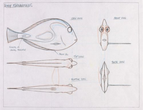 Manga Character Design Pdf : Best images about creature design fish on pinterest
