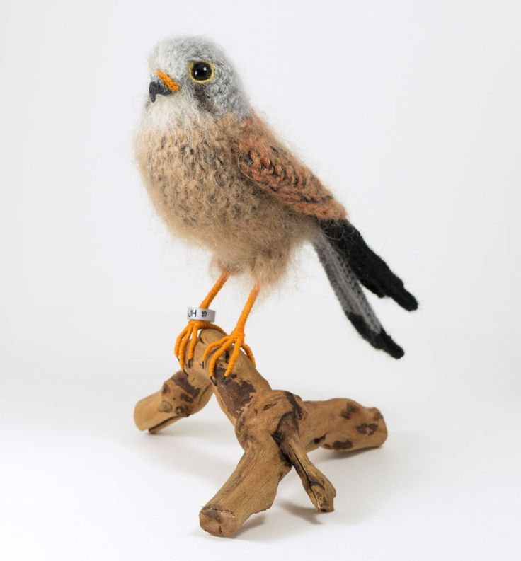 I make realistic looking birds using crochet, needle-felting and a bit of embroidery, because I really like birds and couldn't persuade any real ones to come indoors.   Each bird takes between 1 and 4 weeks to make. I make them out of pure wool yarns and fill them with lamb's wool - which makes them feel quite alive - and each one is tagged with a year-coded metal leg ring.